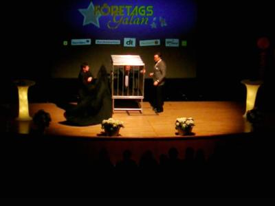 magiker trollkarl ludvika företagsgalan 2015